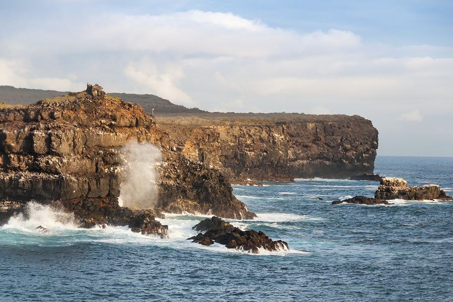 M/S Beagle: Central & Southern Galapagos Islands