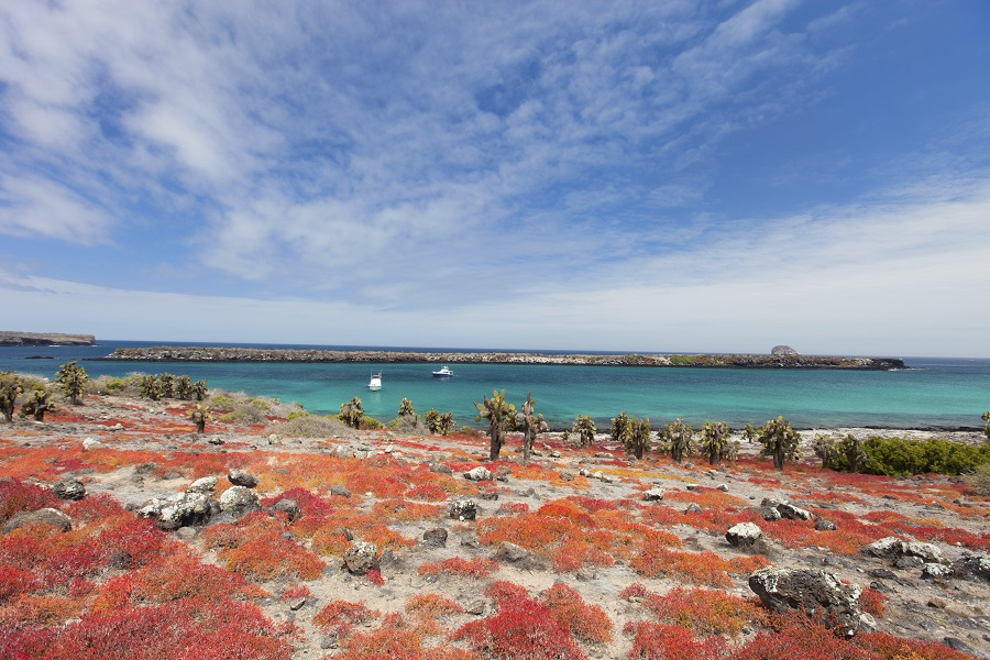 8 Day Anahi: Eastern Galapagos Islands
