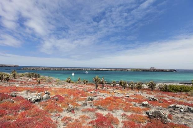 M/C Eco Galaxy II: Eastern Galapagos Islands