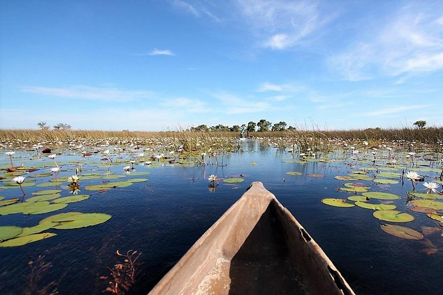 Okavango Wilderness Trail