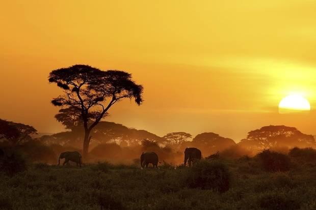 Kenya & Tanzania Explorer (Sopa Lodges)
