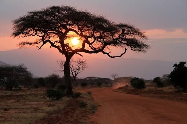 Kenya & Tanzania Explorer (Serena Lodges)