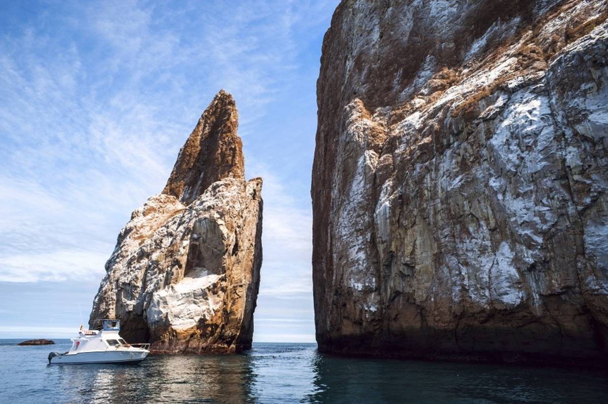 Galapagos Land & Sea - Central and South Islands