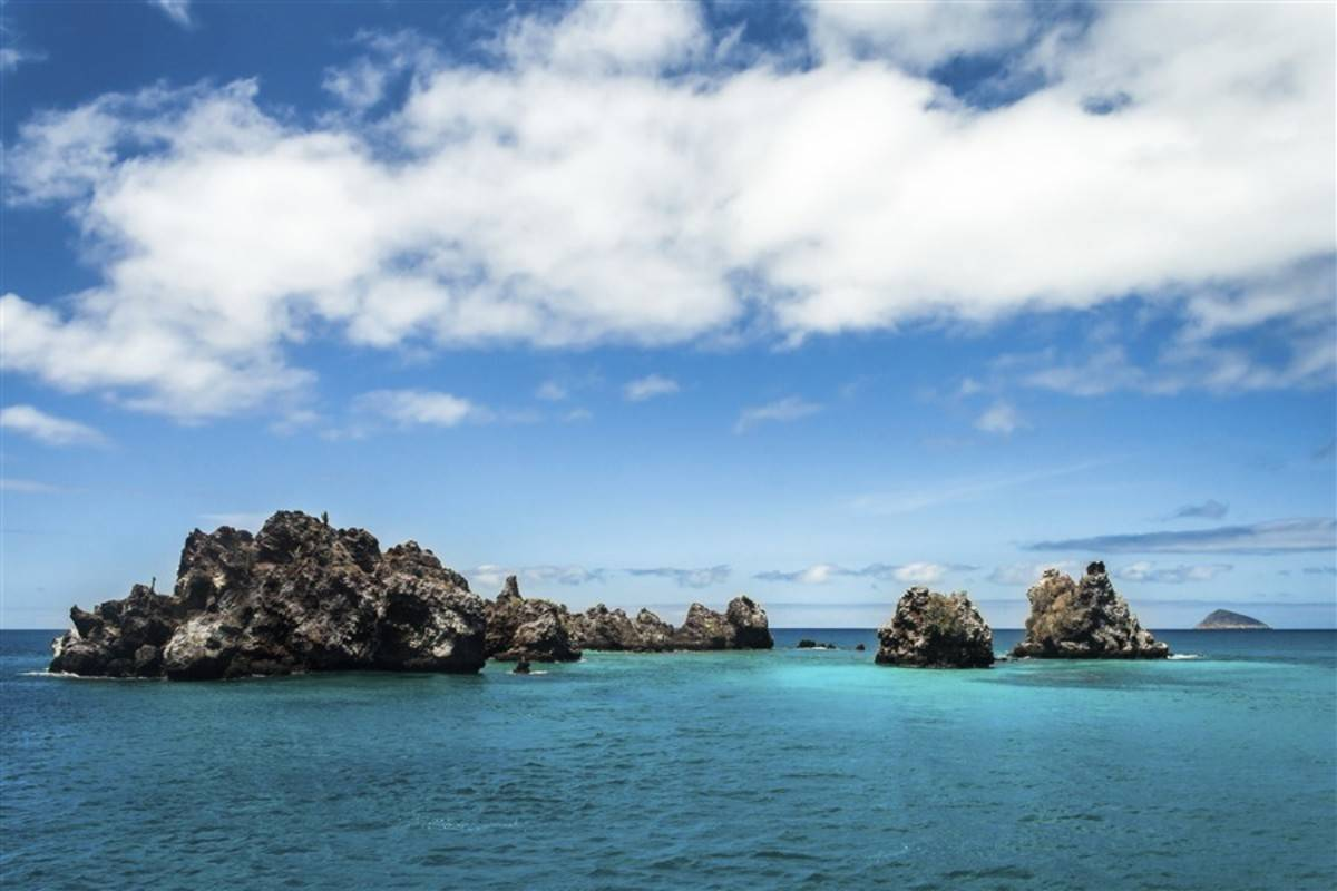 Central & South Galapagos Islands