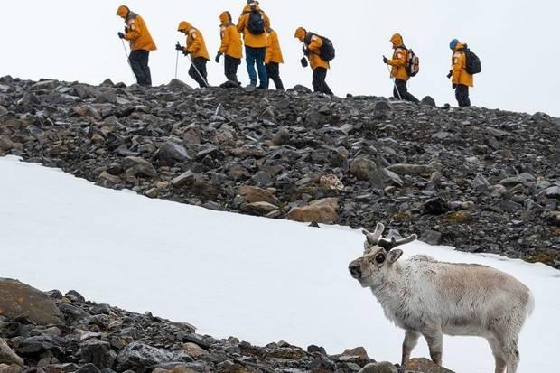 World Explorer: Three Arctic Islands - Iceland, Greenland and Spitsbergen (Northbound)