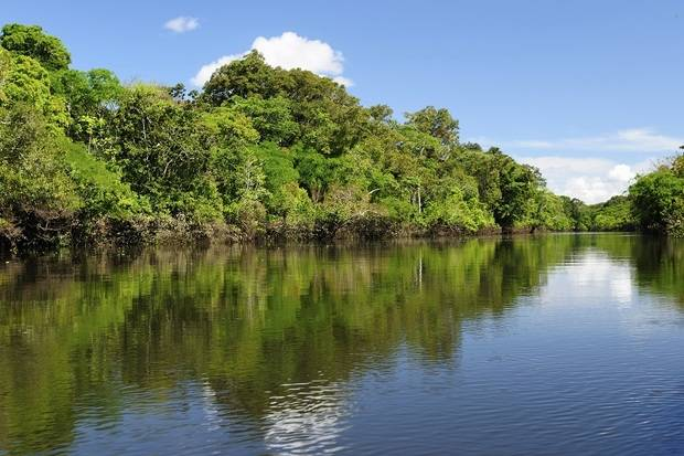 M/V La Perla: Amazon River Cruise