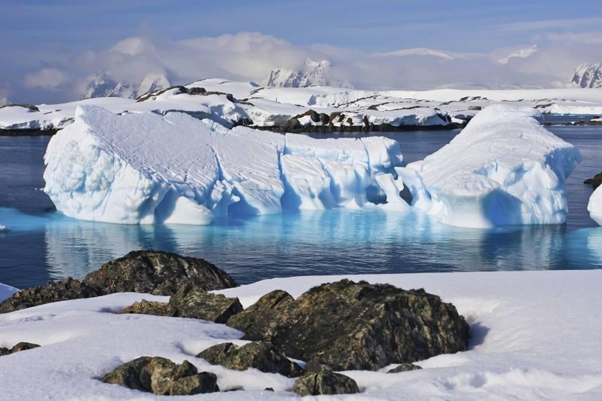 Antarctic Peninsula - Realm of Penguins & Icebergs