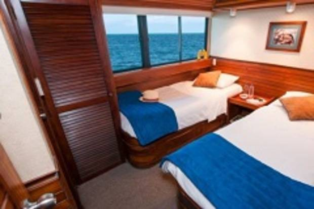 Dolphin Deck Double Cabin