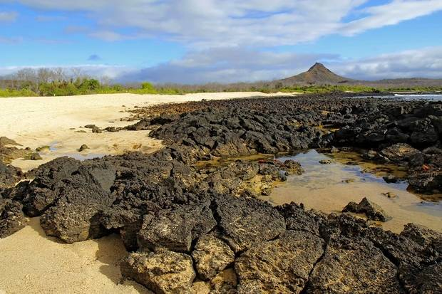 8 Day M/Y Galaxy: Central & Western Galapagos Islands
