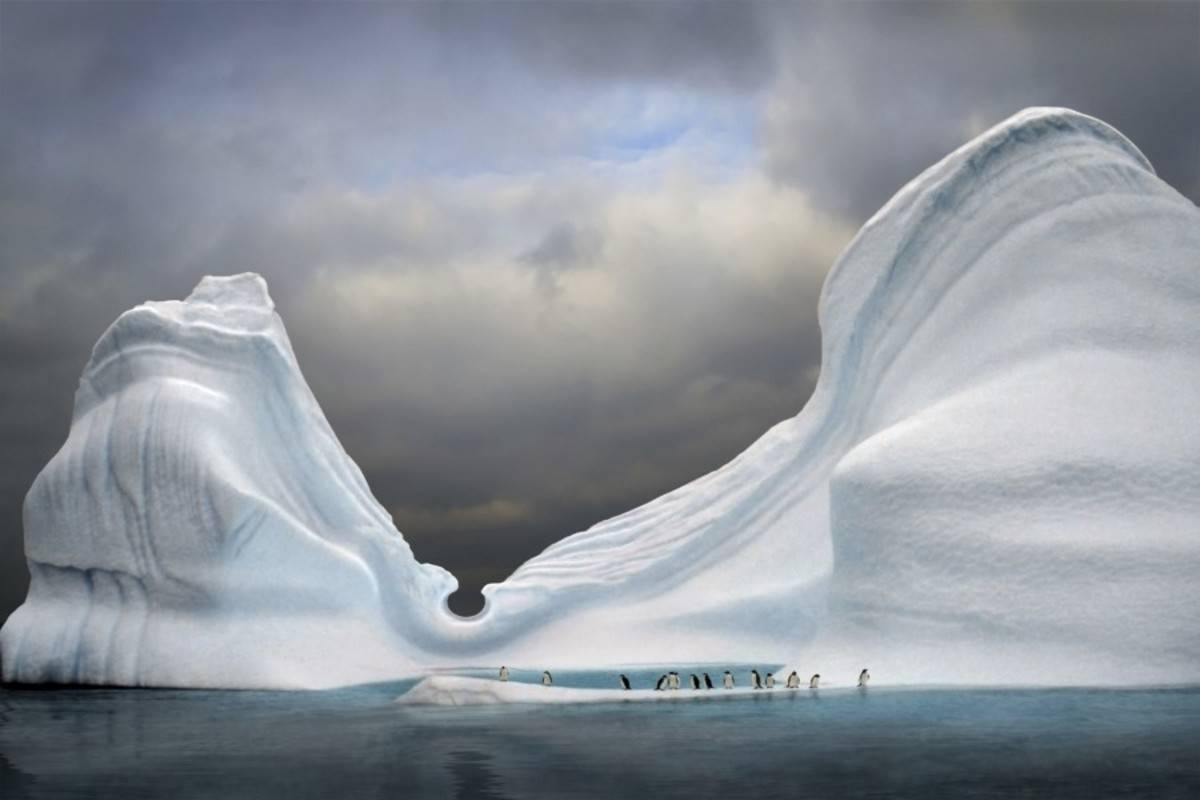 Hebridean Sky: Falklands, South Georgia & Antarctica