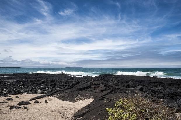 Galapagos Loop Island Hopping