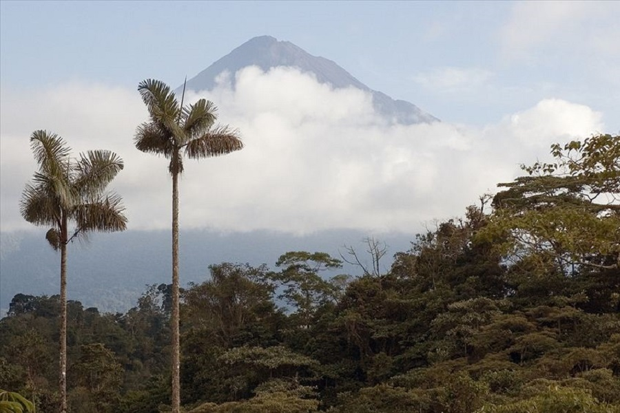 Andes & Amazon Odyssey