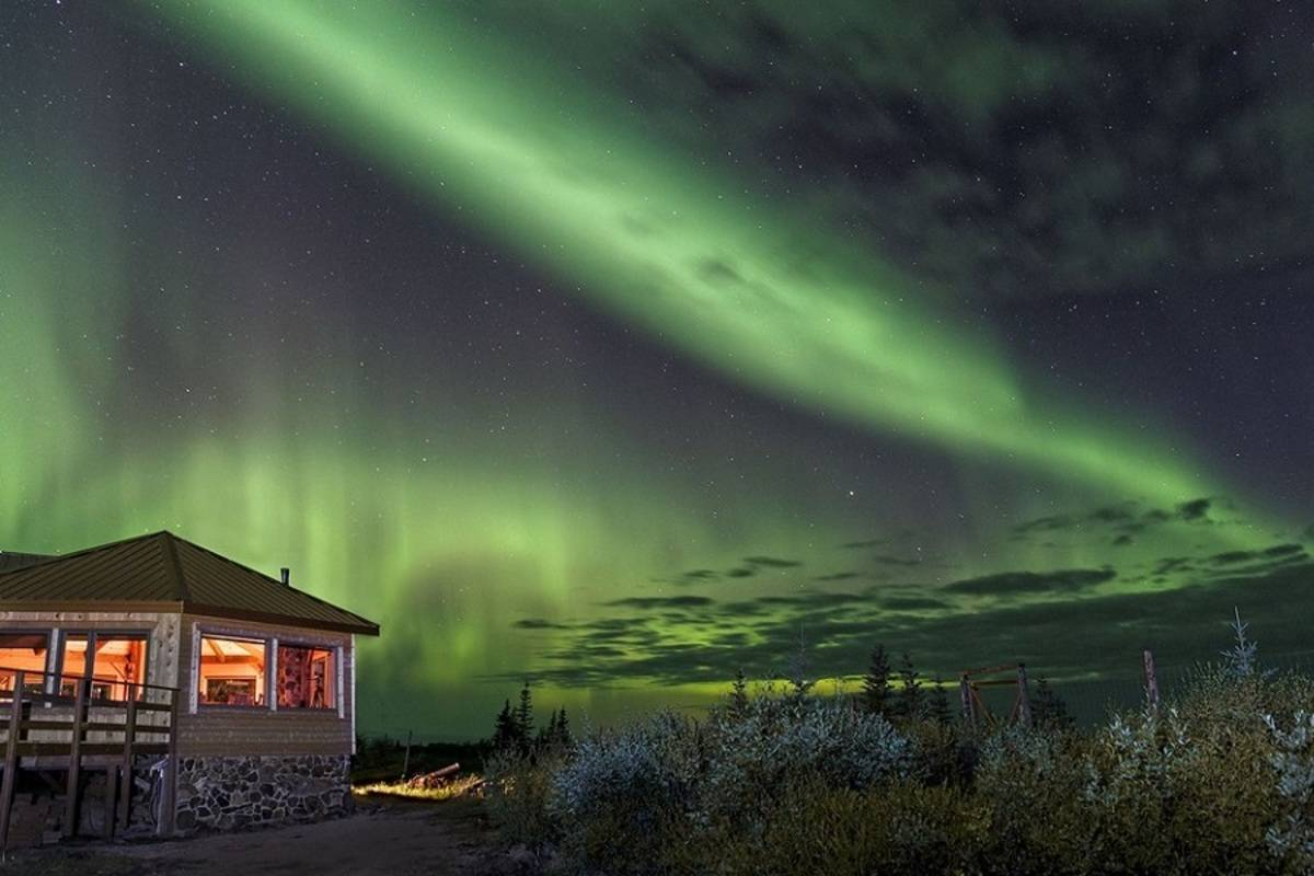 Wildlife & Wellness - Nanuk Polar Bear Lodge
