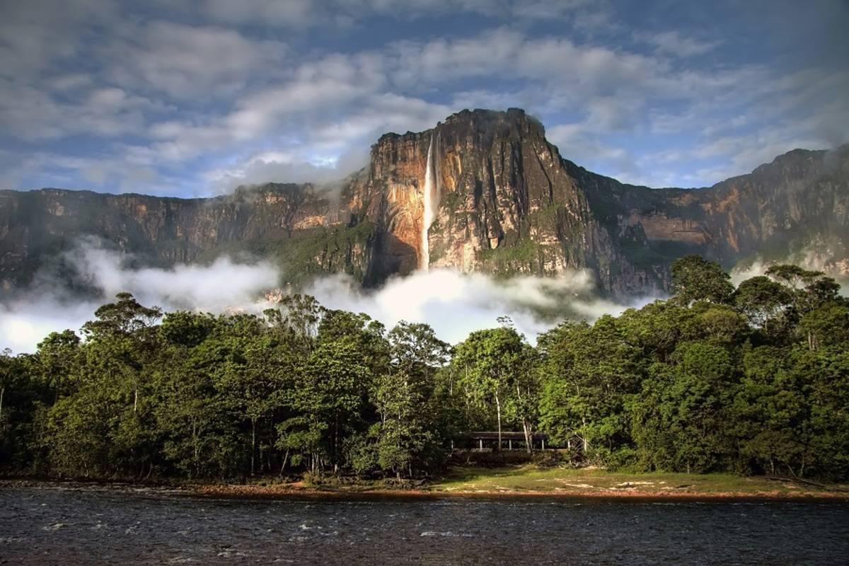 Angel Falls Safari