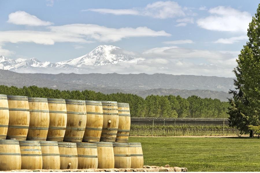 Mendoza Wine Escape