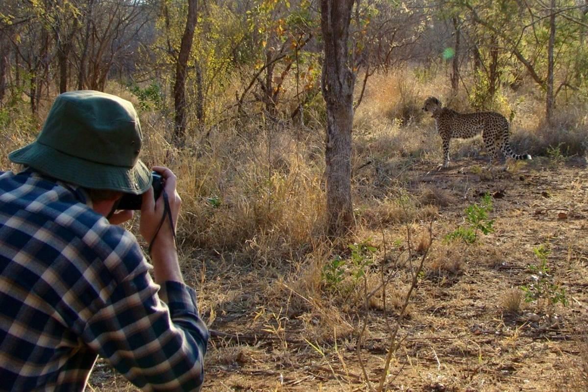 Makutsi Walking Safari