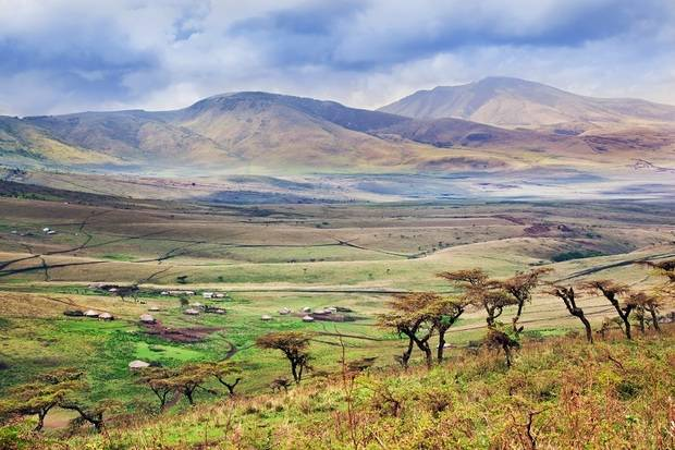 Simba Safari: Tanzania (Wellworth Lodges)