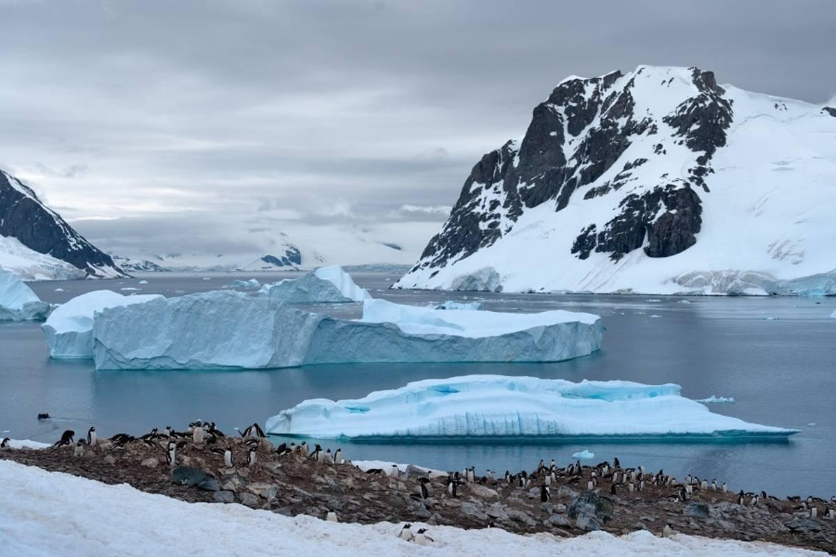Argentina & Antarctica Explorer