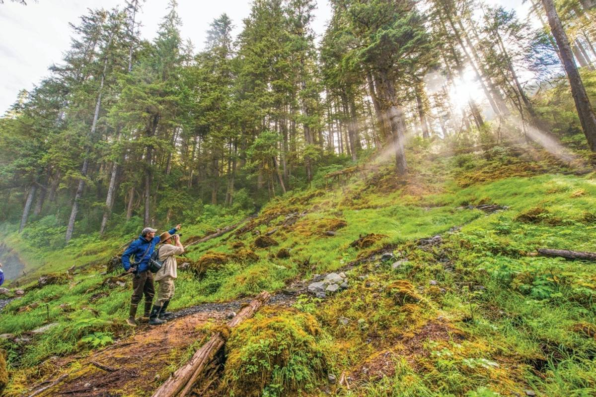 Wild Alaska Escape: Ketchikan to Juneau