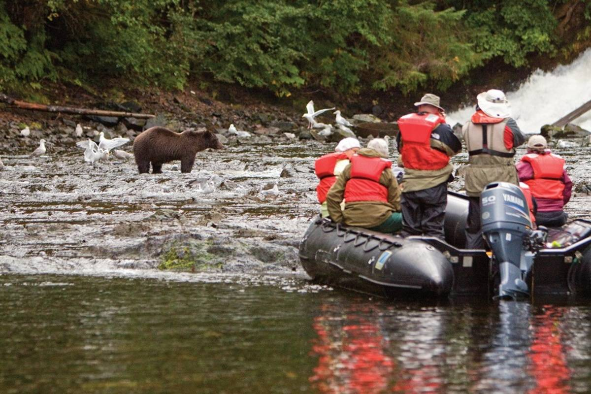 National Geographic Sea Lion: Wild Alaska Escape: Sitka to Juneau