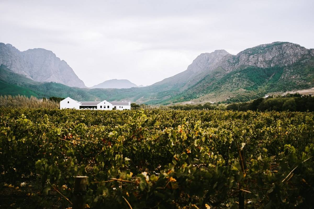 Wine, Whales and Wildlife - Self Drive