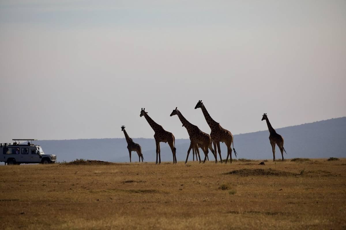 Tanzania Sky Safari by Elewana