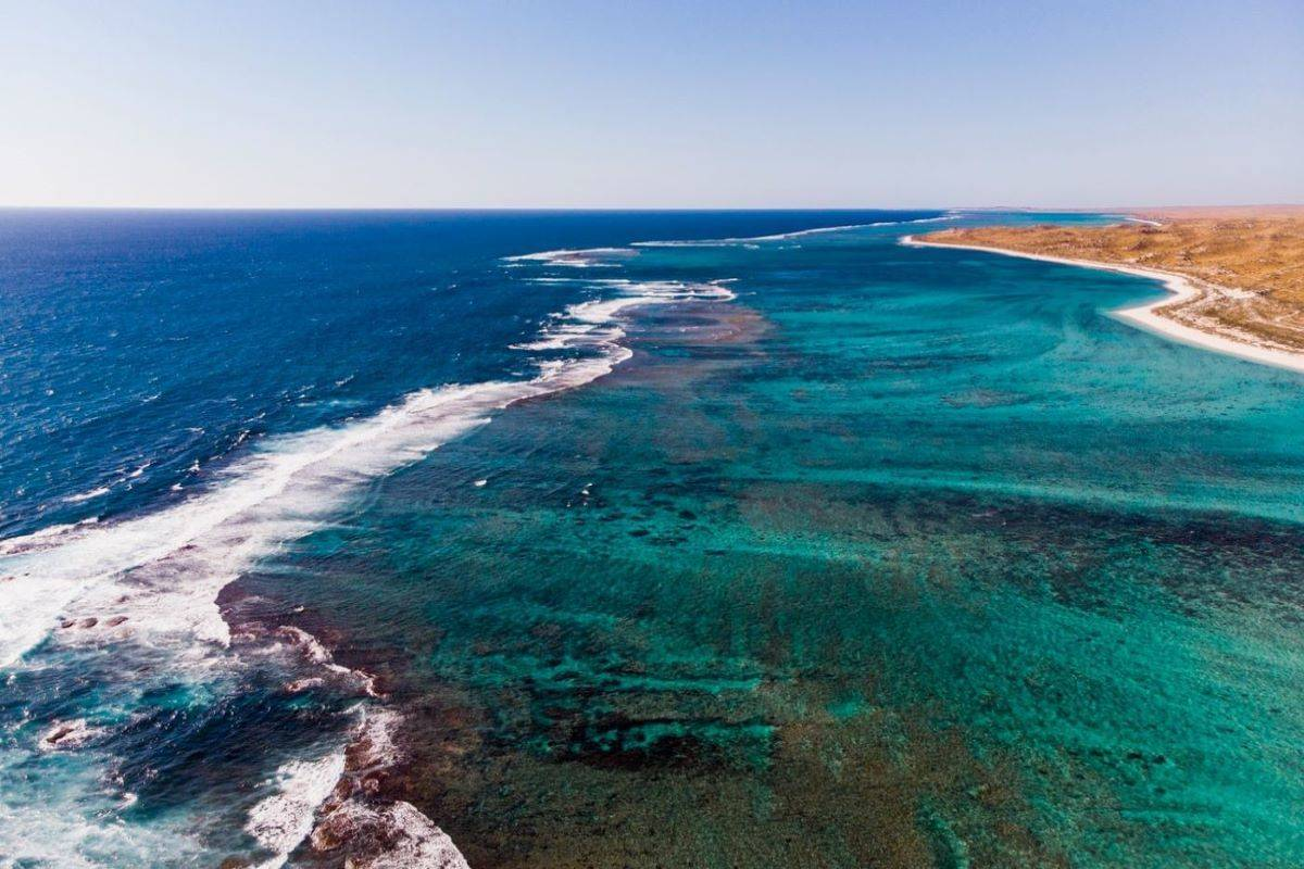 Ningaloo & The Blue Water Wonders of Australia's West