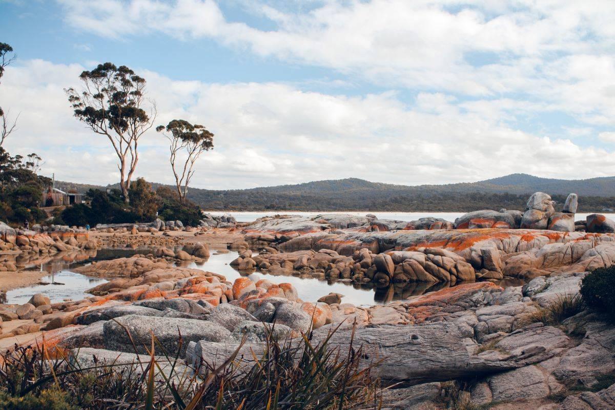 Tasmania's Footsteps and Trails
