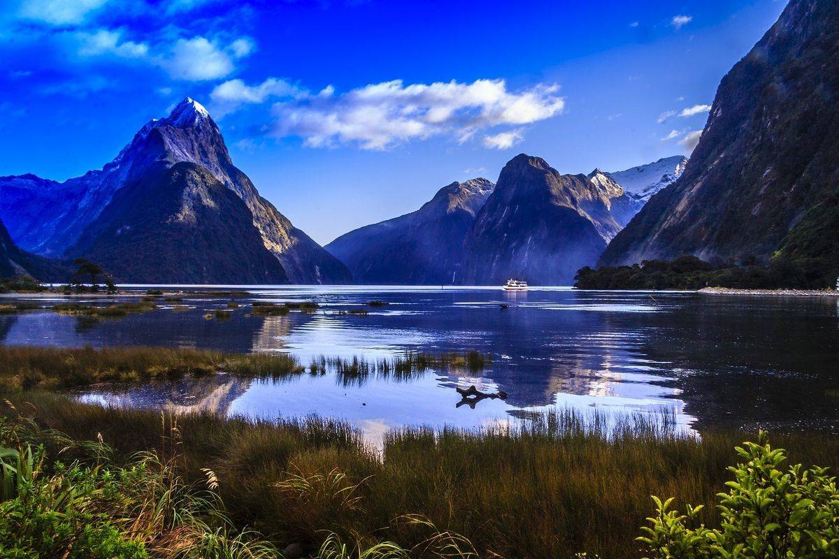 South Island: Trekking & Fiords