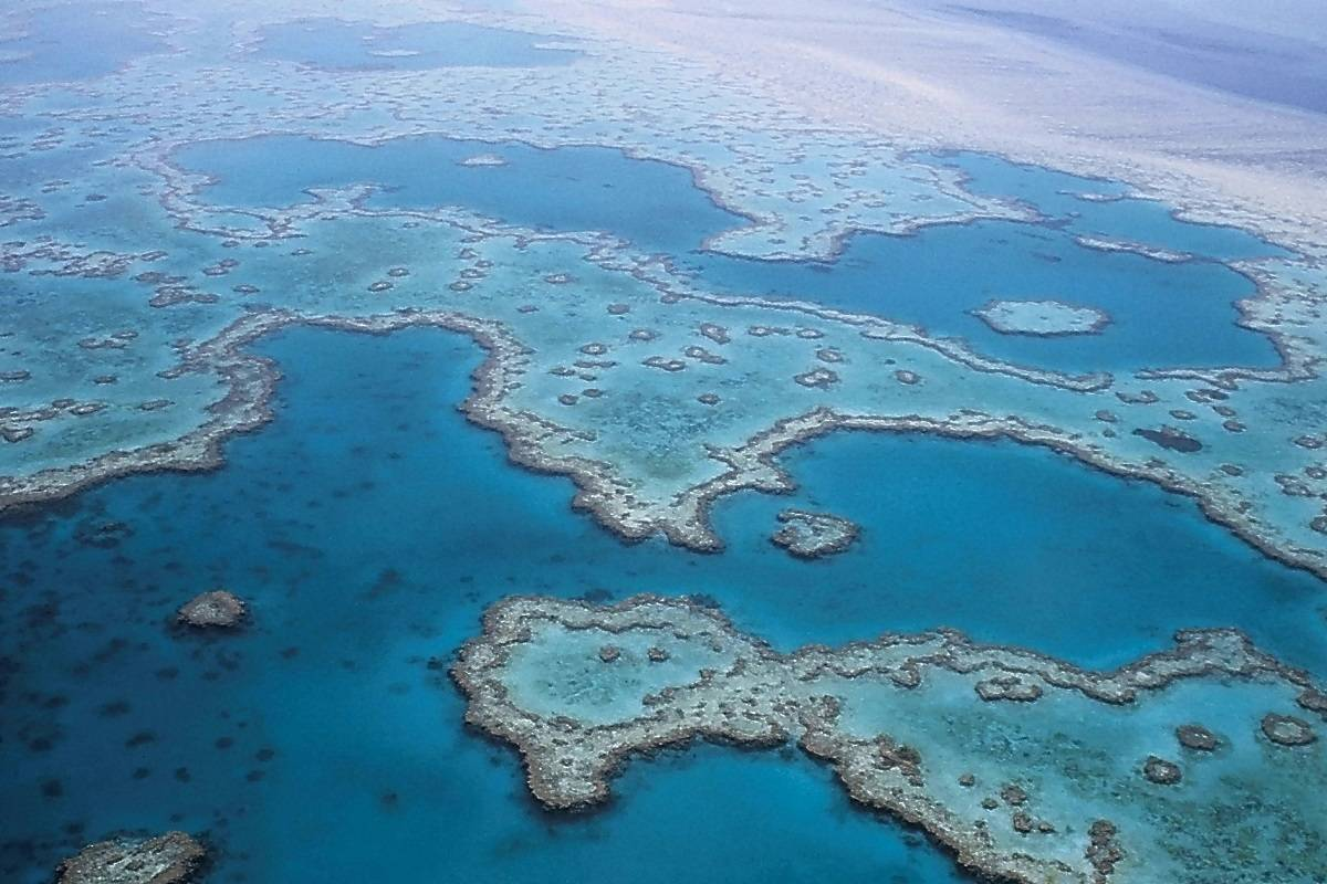 Barrier Reef Air Cruise