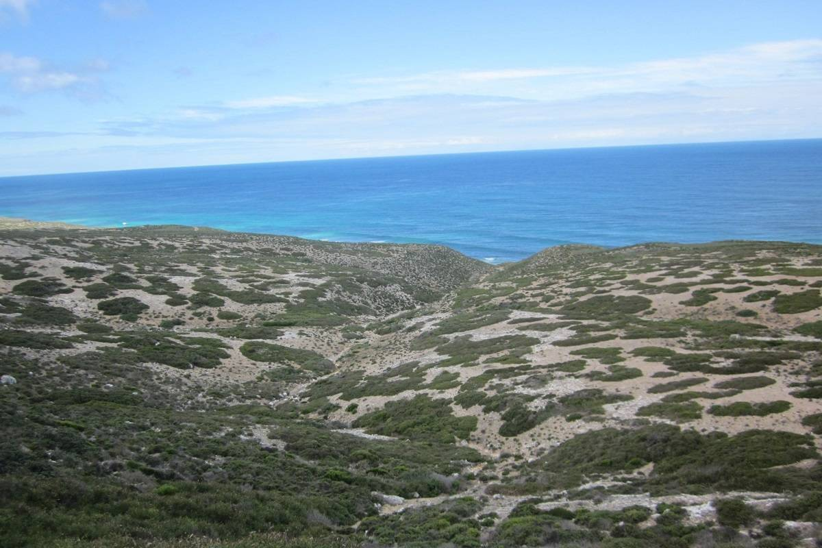 Western Australia's Incredible South Coast: Wine, Waves and Wildlife